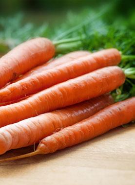 zanahorias-img